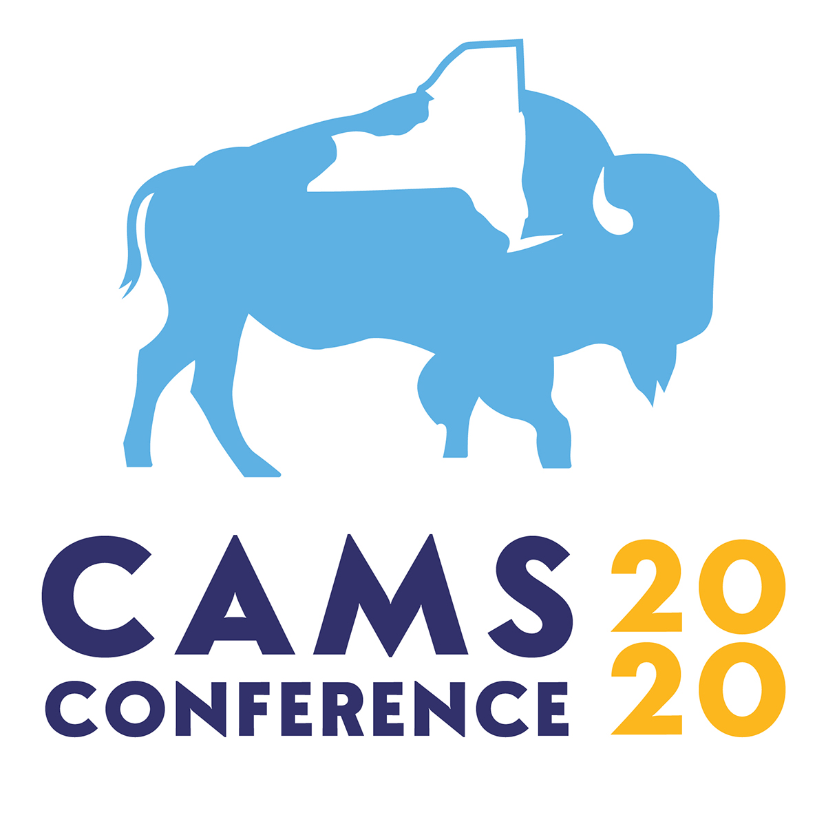 CAMS Conference 2020
